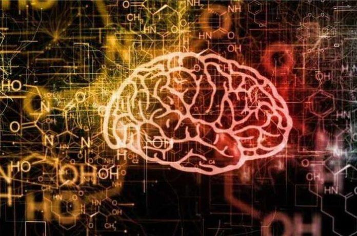brain-supplements-because-great-minds-think
